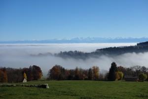 Plateau de Diesse et panorama des alpes